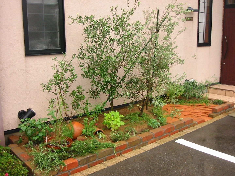 玄関周りの植栽
